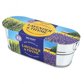 Windowsill Planter - Lavender & Thyme