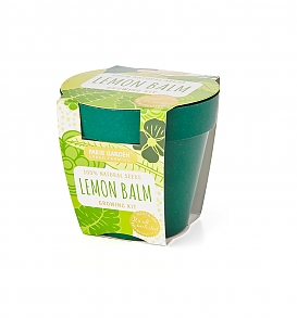Bamboo Bio Pot - LEMON BALM
